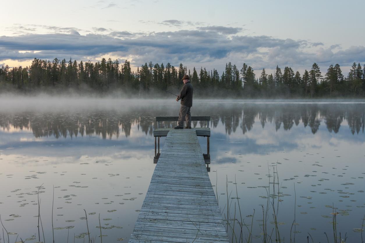 Sveriges landskapsfiskar – från Medelpad till Östergötland