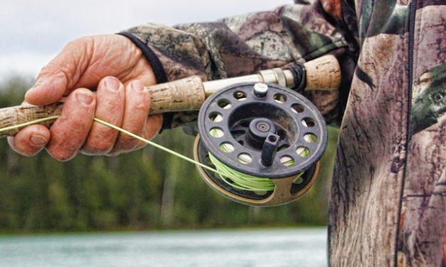 På vilka sätt kan man tjäna pengar på fiske?