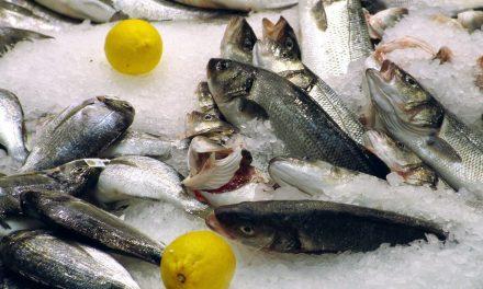 Hur man hittar bra och billig fiskeutrustning