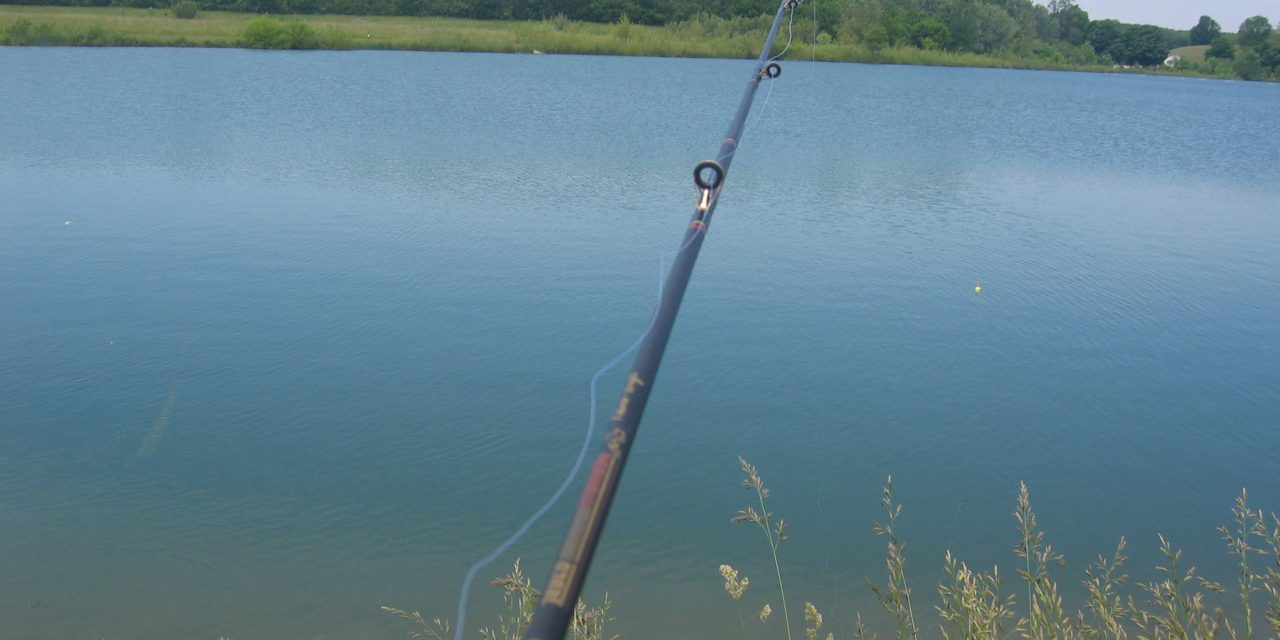Fiskesemester utomlands