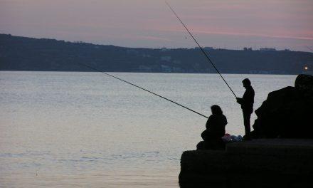Fiske och skador